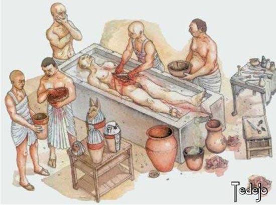 La Vida Cotidiana de los Egipcios - Novedades y